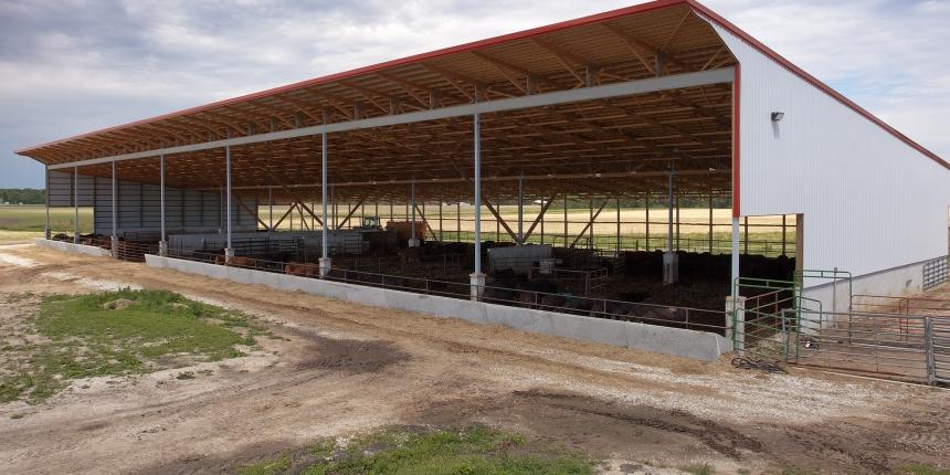 summit livestock monoslope beef barns offer producers wide range ofsummit livestock monoslope beef barns offer producers wide range of benefits