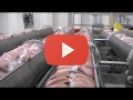 Embedded thumbnail for Food Safety Interventions in the Meat Industry